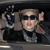 Lady Gaga gasta 60 mil dólares comprando peces