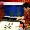 Un Mago Chino que doma peces se ve obligado a revelar su truco