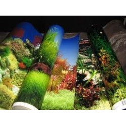 Lamina Decorativa 50 cm Penn Plax