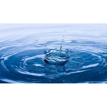 Agua de Osmosis x litro