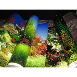 Lamina Decorativa 30 cm Penn Plax